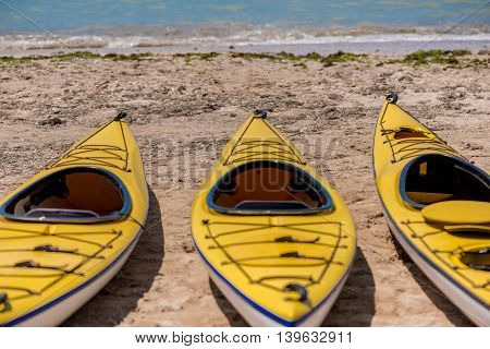 Colorful Kayaks Align The Water