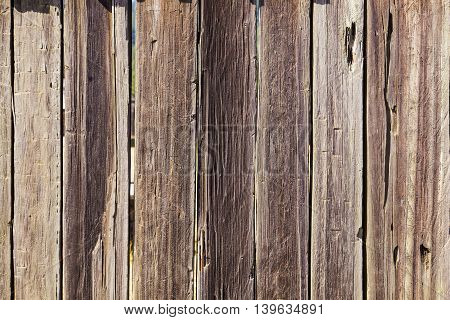 Fort Ross - old  wooden walls as background