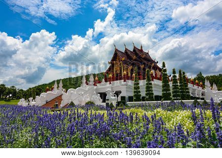 Chiang Mai, Thailand - July 22, 2016: Blue flowers growing in front of the pavilion at the Thai Royal Park Rajapruek.