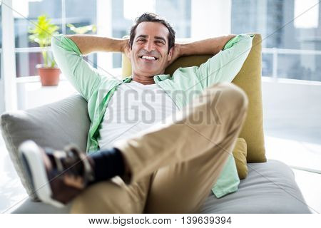 Portrait of happy man relaxing on sofa at home
