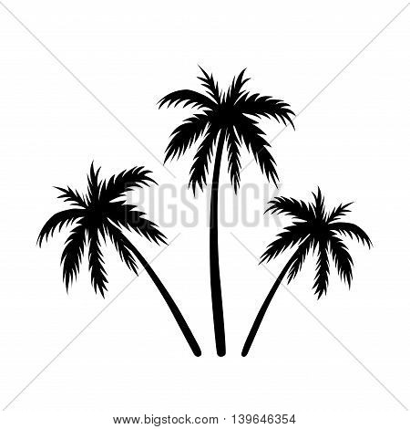Three palms sketch. Black coconut tree silhouette isolated on white background. Symbol of tropical nature beach summer holiday travel. Floral exotic landscape. Natural design. Vector illustration