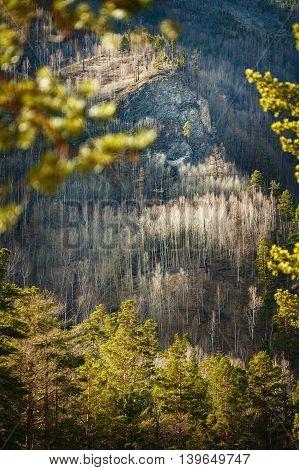 Mountain landscape view. Nature autumn travel background.