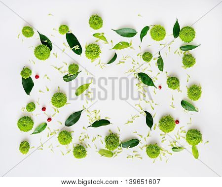 Pattern With Petals Of Chrysanthemum Flowers And Ficus Leaves.