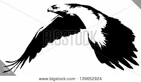 black and white linear paint draw eagle bird vector illustration