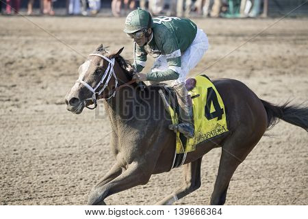 SARATOGA SPRINGS, NY - July 22: Sweet Loretta in the Stretch winning the 98th runniing of the Schulerville Stakes for 2 year old Fillys on July 22, 2016 in Saratoga Springs, NY.