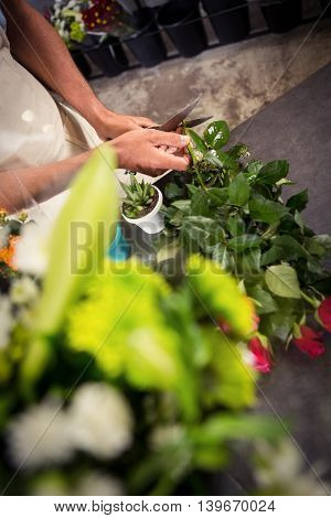 Mid section of male florist trimming stems of flowers at his flower shop