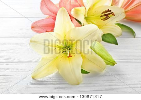 Beautiful lilies on light wooden background