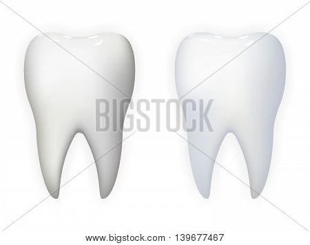 Tooth Poster Stomatology Realistic Isolated Icon Template Background Mock Up Design Vector Illustration