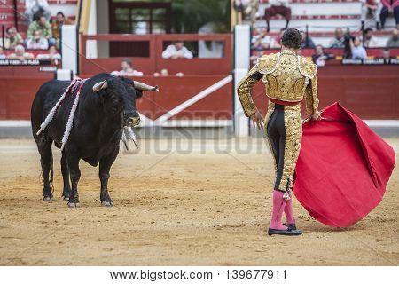 Jaen SPAIN - October 17 2008: Spanish bullfighter Cesar Jimenez bullfighting with the crutch in the Bullring of Jaen Spain