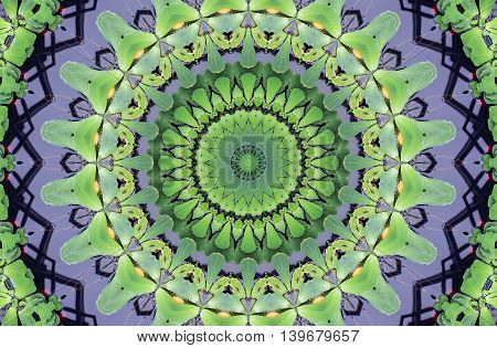 Kaleidoscope Abstract Ornament