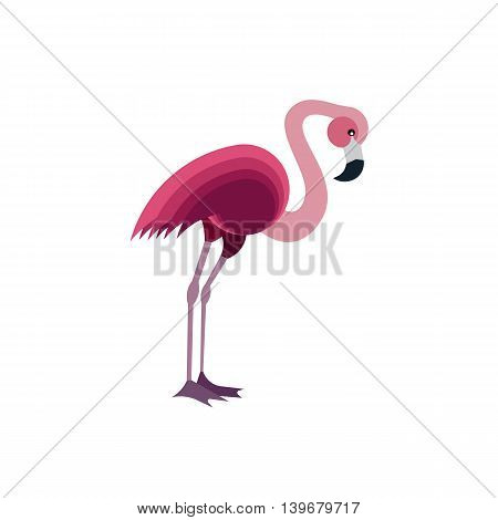 Flat Vector Illustration of a Pink Flamingo