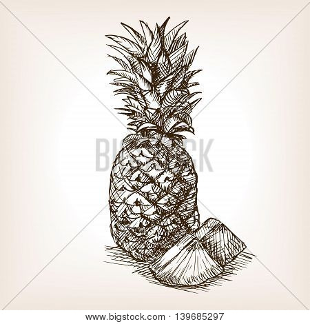 Pineapple fruit sketch style vector illustration. Old engraving imitation.