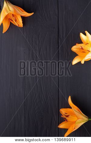 frame of flowers background black boards copyspace
