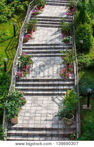 stone steps with flowers in the garden