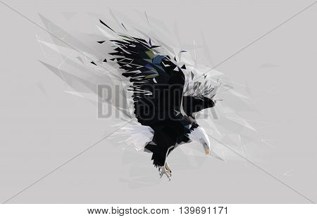 Bald eagle landing polygon art isolated in gray background