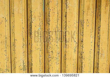 Texture of wall made of painted wooden planks
