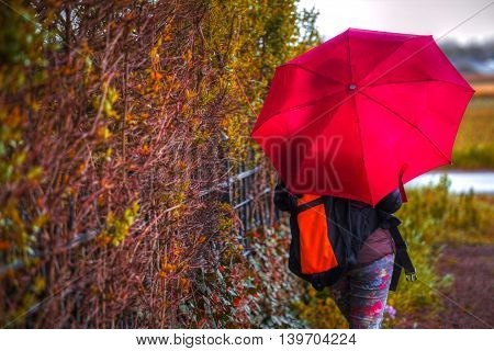 woman under an umbrella standing at the fence of bushes