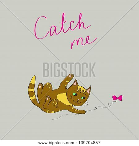illustration with the image of a brown playing cat and the words Catch me on a gray background.