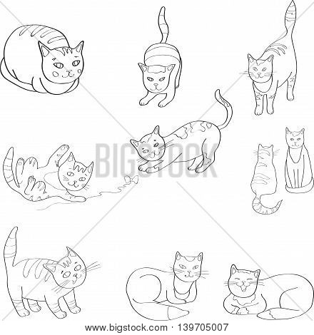Illustration Set with the image of cats. black and white line