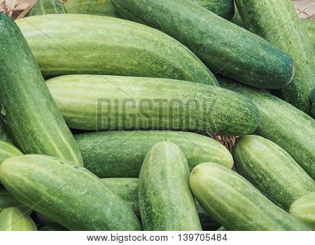 Group of fresh cucumbers, Used for food image