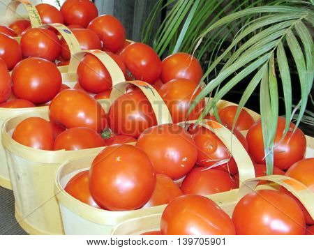 The red tomatoes on market of Whittamore's Farm in Markham Ontario 23 July 2016 Canada