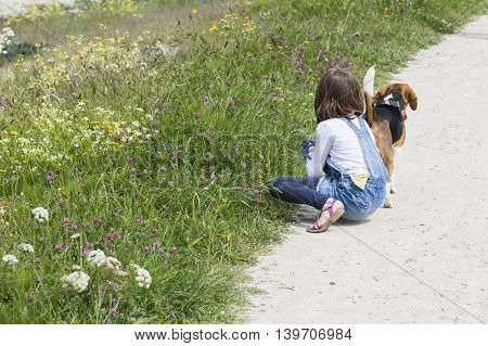 A child girl on a walk with a little dog
