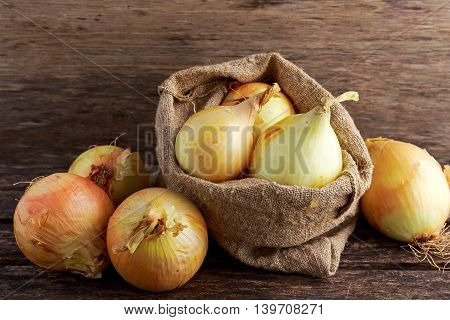 White freshly harvested onion in burlap bag on wooden old table.