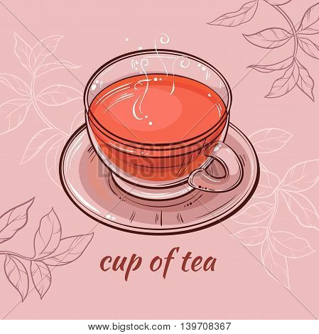 vector illustration with cup of tea on color background