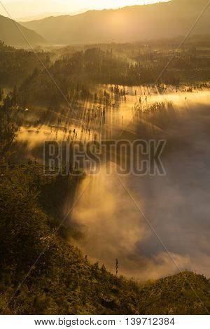 Sunrise Mountains.Asia Nature Morning Volcano Viewpoint.Mountain Trekking, View Landscape Valley Bali Village. Nobody photo.Vertical picture.The first rays of the rising sun.White Fog Jungle Forest