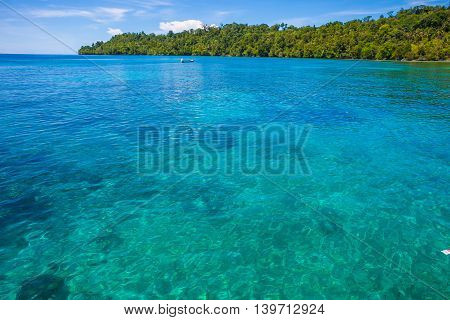 Photo of Man Driving Natural Wood Long Tail Boat Caribbean Ocean. Clear water and blue sky with clouds. Horizontal