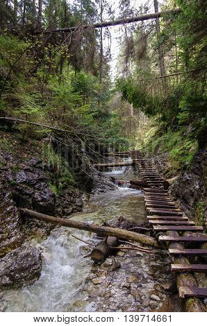 Hiking Trail  Across River In Slovak Paradise National Park, Slovakia