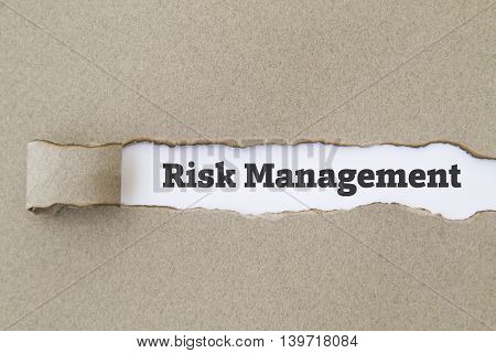 Risk Management word written under torn paper concept