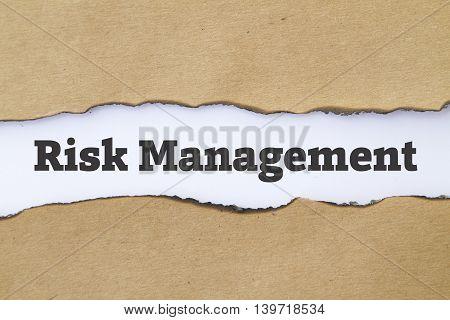 Risk Management written under torn paper concept