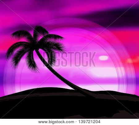 Vector background summer vacation with sunset and palm trees