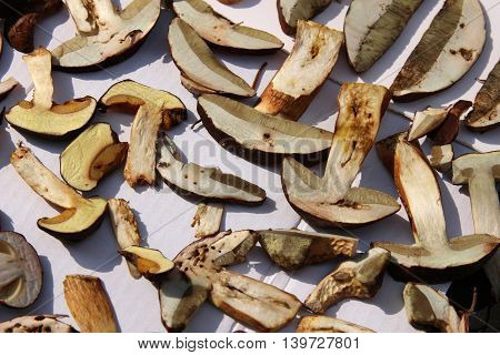 Dried mushrooms ,Cut fragrant dried porcini mushrooms