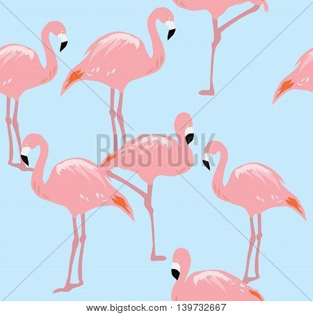 vector illustration of a flamingo seamless background