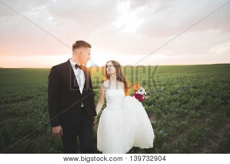 Beautiful couple in field, Lovers or newlywed posing on sunset with perfect sky.