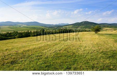 Green Hills Near Sarospatak In Hungary Tokaj Region