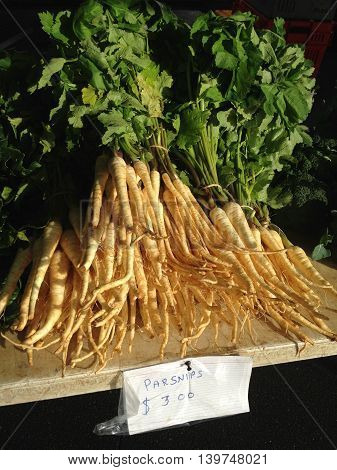 Parsnips - vegetables for sale for $3 at a farmers market. Photographed in New Zealand NZ.