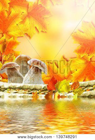 beautiful colorful autumn leaves and mushrooms boletus