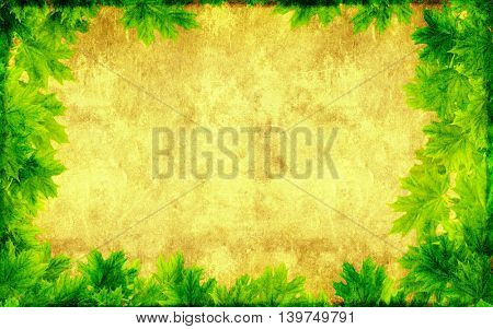 Grunge texture of the old soiled paper of green color with maple leaf border