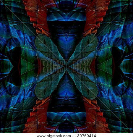The amazing dark blue background made from Blue-and-gold macaw parrot's feathers beautiful texture