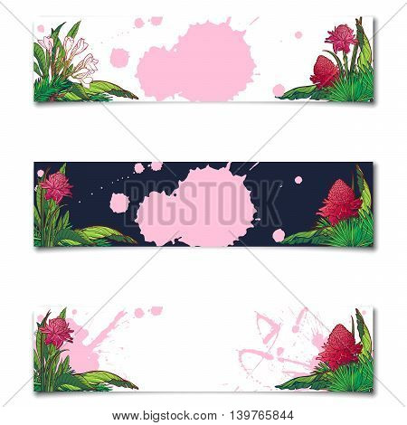 Set of 3 Tropical Floral horisontal banners. Banana and palm tree leaves, exotic flowers. Sticker, flyer or banner design template. EPS10 vector illustration