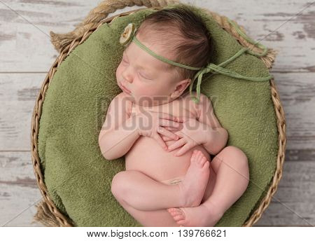 newborn girl sleeping in a wicker basket on the back under the translucent green veil
