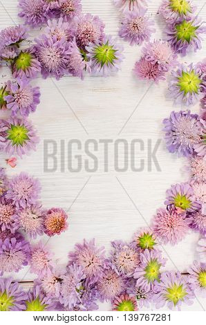 Bright summer flowers frame on white background. Bunch of purple flowers with copyspace in center