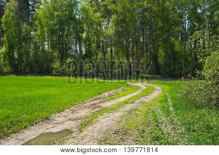 Rural summer landscape with old road.Rural summer landscape with old road
