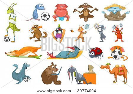 Set of colourful animals using sports equipment. Funny animals playing football, baseball, meditating in lotus pose. Animals working on computer. Vector illustration isolated on white background.