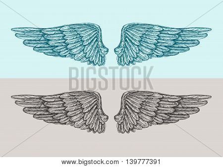 Hand-drawn vintage angel wings. Sketch vector illustration