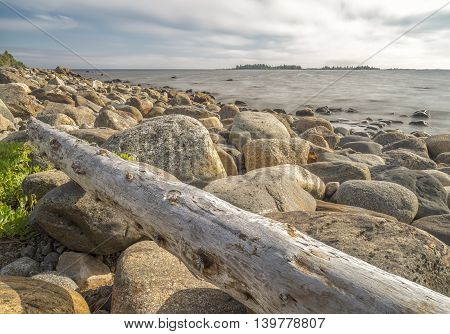 Driftwood on Rocky Seashore with a cloudy sky.