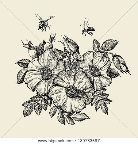 Bees flying to the flower. Hand-drawn beekeeping. Vector illustration